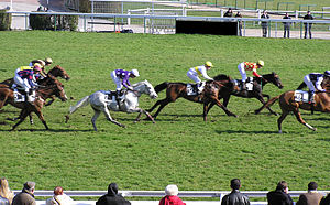 Horse-race at Auteuil hippodrome