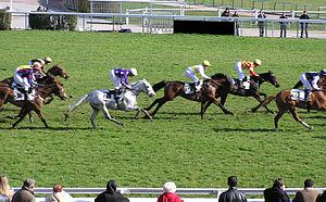 Horse-race at Auteuil hippodrome