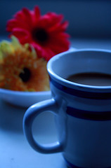 Free Cup of Coffee and Flowers at Daybreak Creative Commons