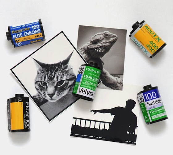 Recycled-Film-Roll-Magnets