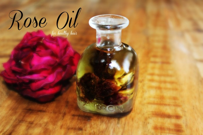 Rose oil benefits for healthy curls