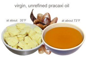 The intense hydration properties of Pracaxi Oil for hair