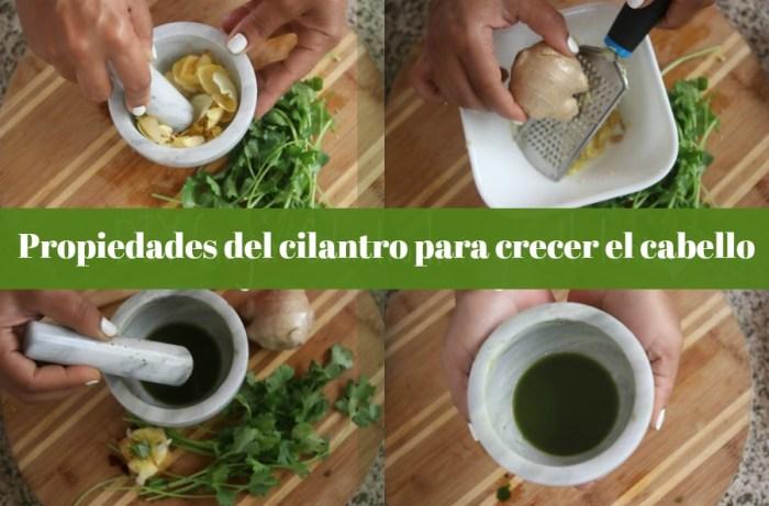 Tónico casero de cilantro y jengibre para crecer el cabello