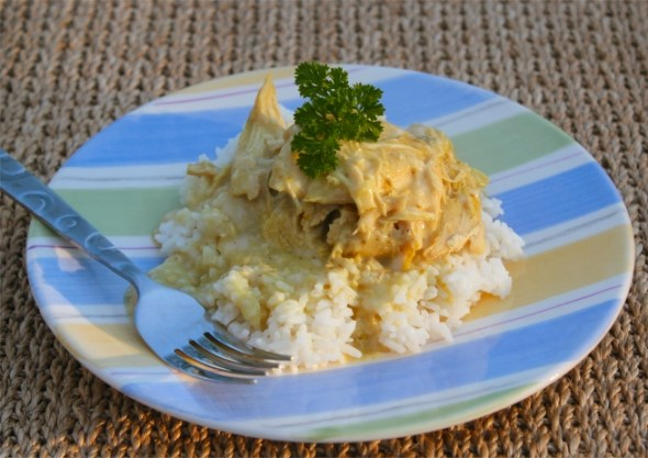 Chicken Curry in a Crockpot