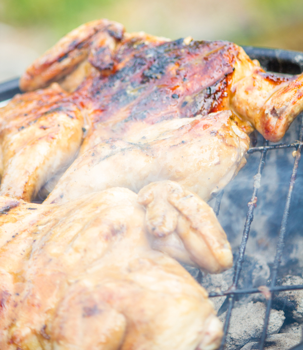 #ad Spatchcocking Chicken for the Grill with a Garlic Soy Sauce Marinade #grill4flavor #shop