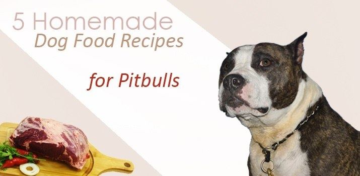 5 homemade dog food recipes for pitbulls daily dog stuff homemade dog food recipes for pitbulls forumfinder Image collections