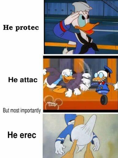 Donald Duck Boner Know Your Meme