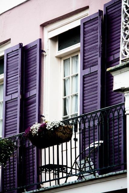 Good Color Crush: Purple Delight