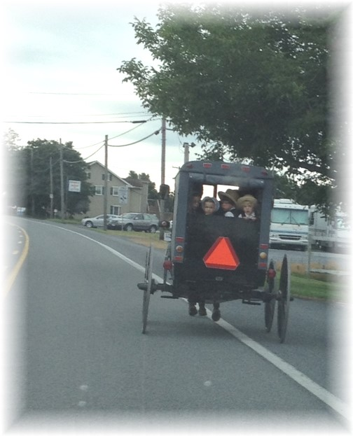 Amish family in open cart in Lancaster County PA 7/11/14