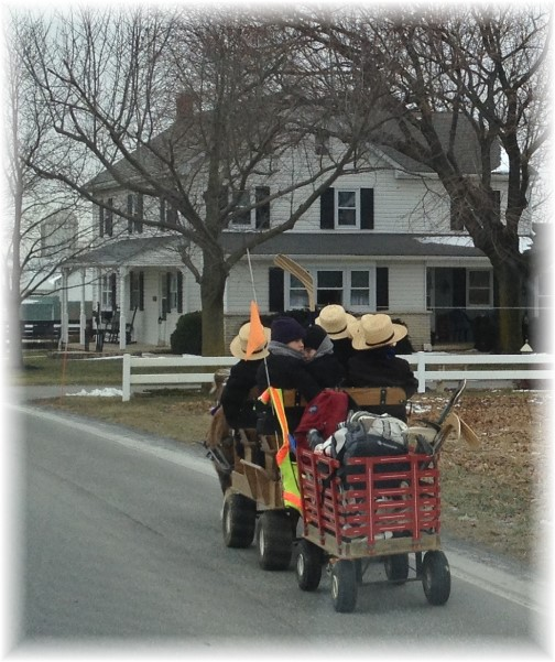 Amish boys in cart with trailer 1/14/15