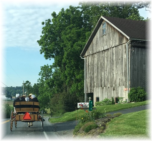 Amish family going to church 6/4/17