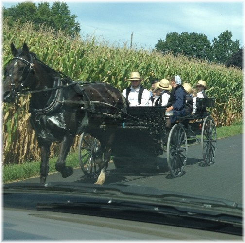 Amish family coming home from church 8/23/15