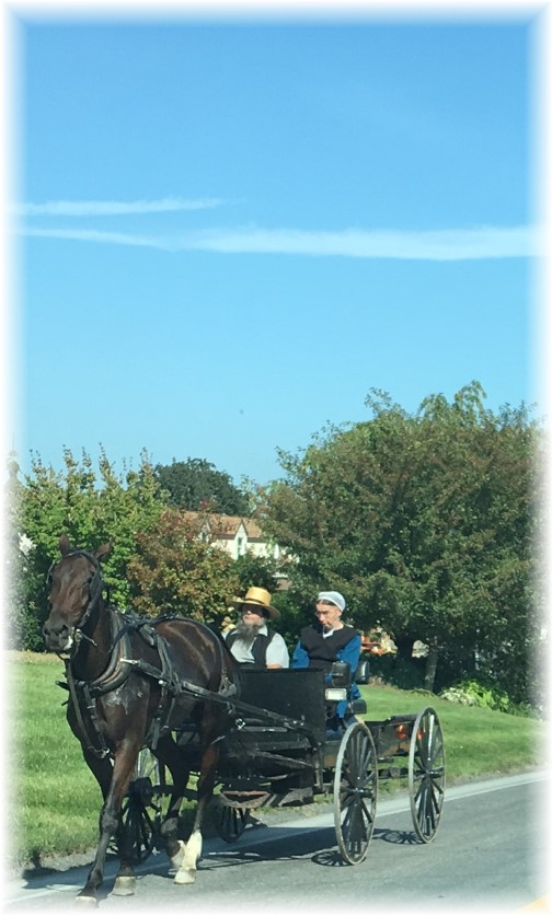 Amish couple in spring wagon 9/21/17