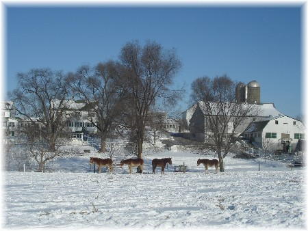 Amish farm, Lancaster County PA