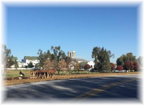 Amish farm 11/4/15
