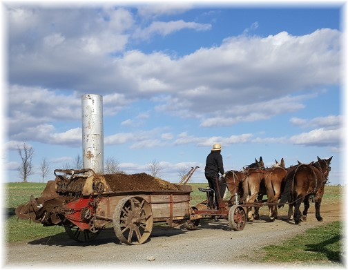 Amish field work 3/2/17