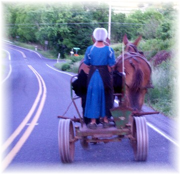 Amish girl with team on E-town Road