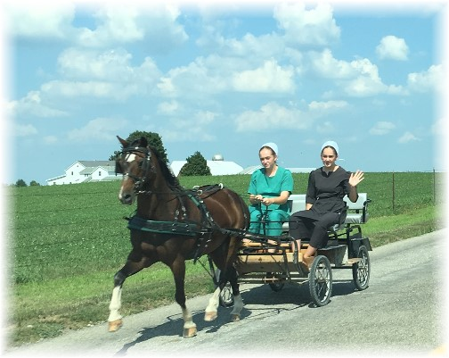 Amish girls waving from cart near Shipshewanna, Indiana 8/4/16