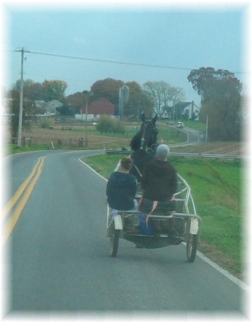 Amish open cart 11/2/13