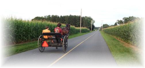 Amish cart on Carmany Road 7/21/14