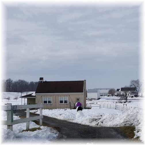 Amish schoolhouse with snowman 1/29/16