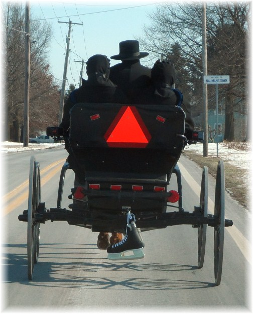 Amish youth in buggie 1/27/13