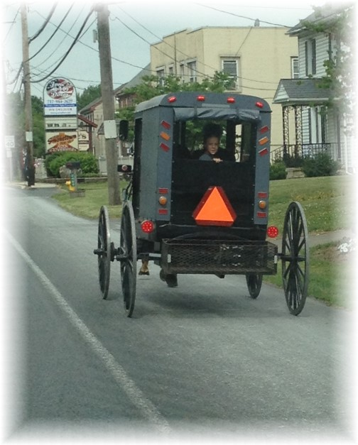 Amish buggy 5/27/15