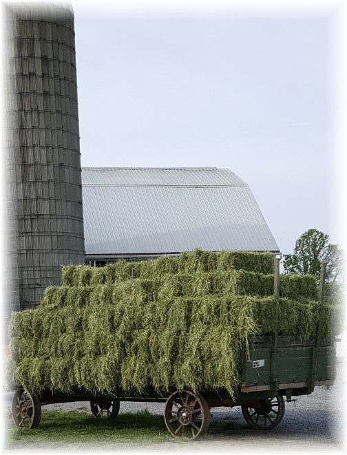 Hay wagon 5/4/17