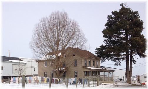 Old-order Mennonite farm 2/12/14 (click to enlarge)