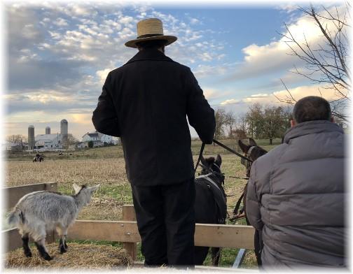 Old Windmill Farm eagle watch 11/12/17