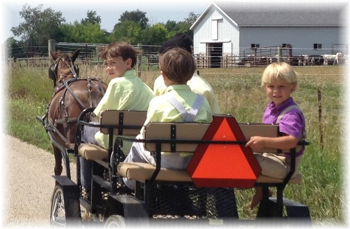 Shipshewana Amish open wagon with boys 8/7/14