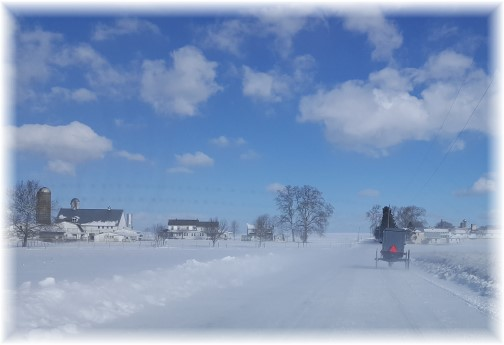 Amish buggie on snowy road 2/11/16 (Click to enlarge)