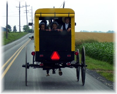 Beiler Amish buggy (yellow)