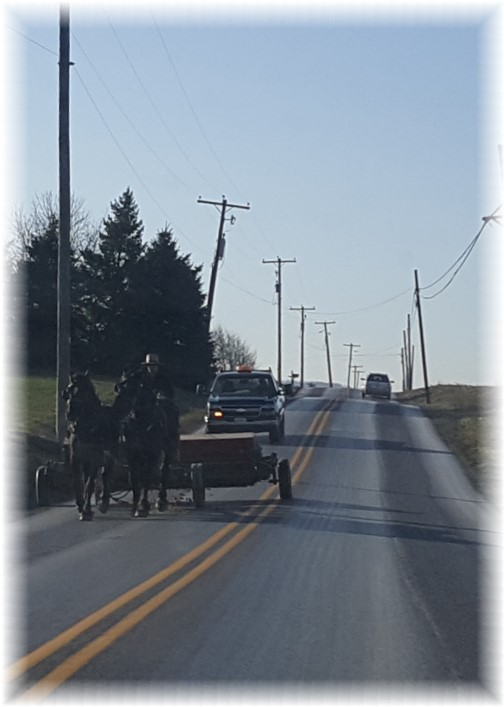 Amish team 2/28/17