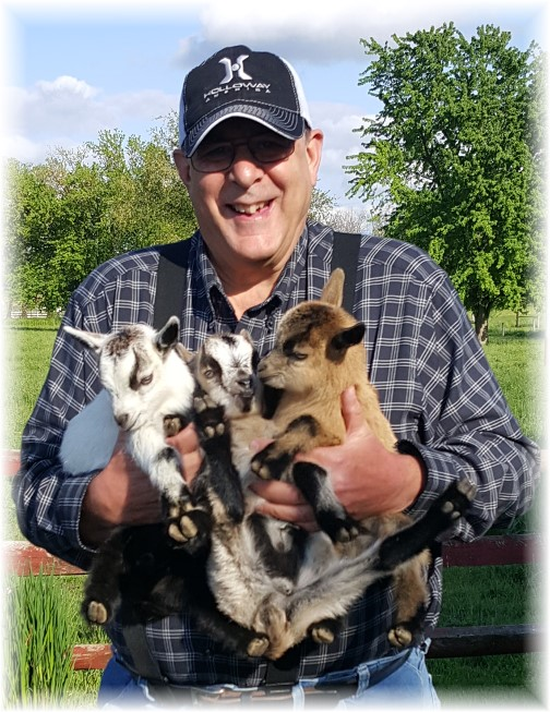 Baby goats on Lapp farm 5/7/16