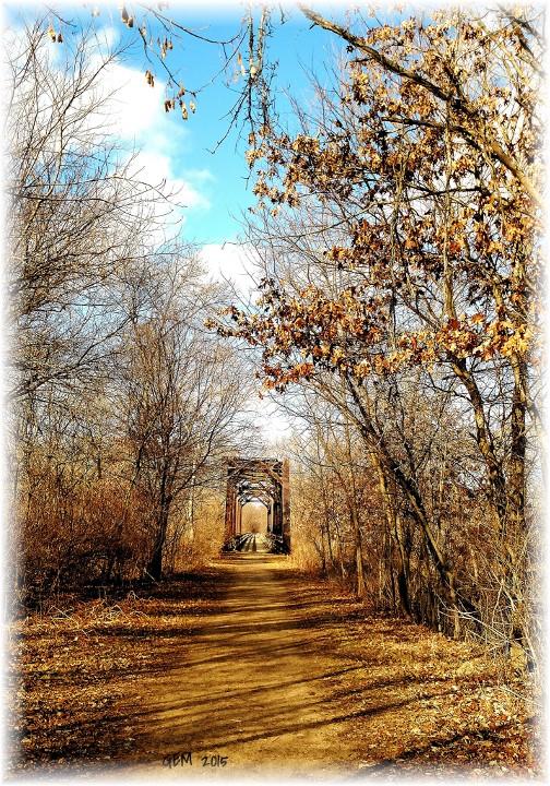 Autumn scene in Wisconsin (photo by Georgia McKelvey)