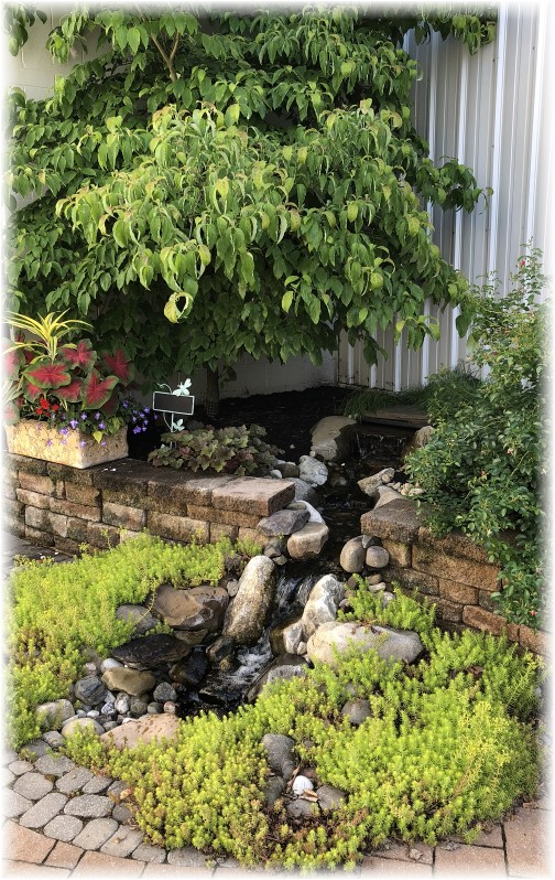 Waterfall in Audrey's warehouse courtyard, Lebanon County, PA 6/12/18