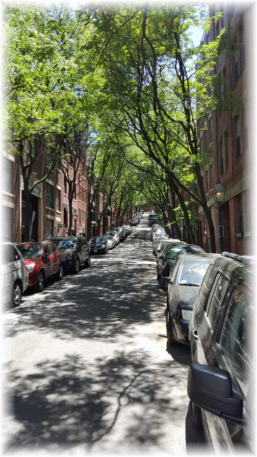 Beacon Hill Street 6/14/16