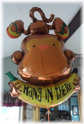 """Hang in There"" balloon"