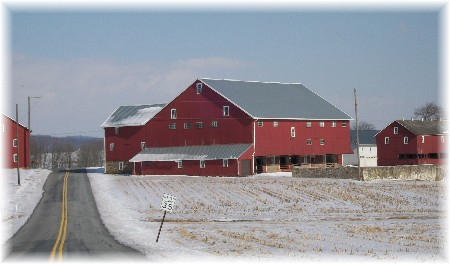 Red barns in snow on Harvest Road, Lancaster County, PA
