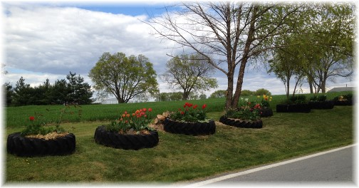Tractor tire planters on Donegal Springs Road
