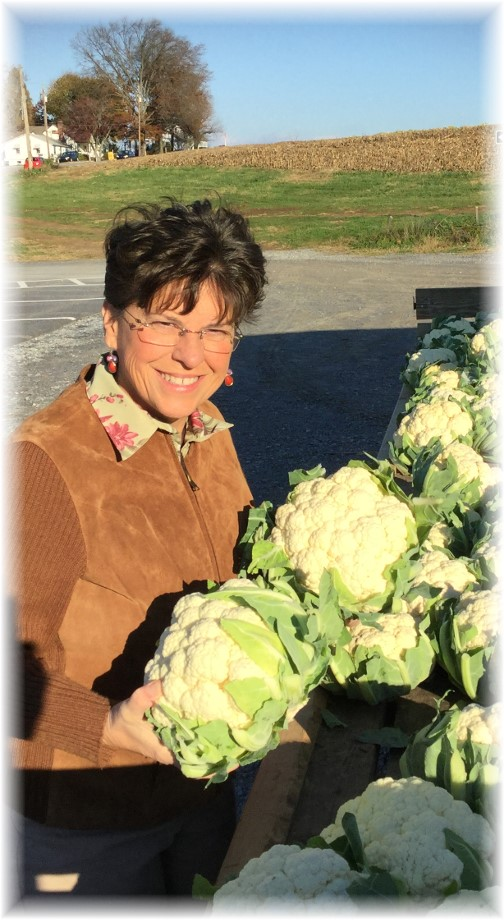 Brooksyne with fresh cauliflower in Lancaster County PA 11/13/15