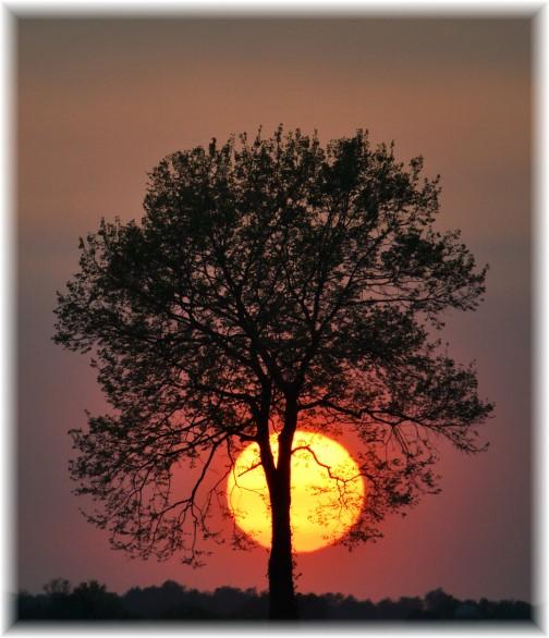 Kraybill Church Road sunset (Photo by Doug Maxwell)