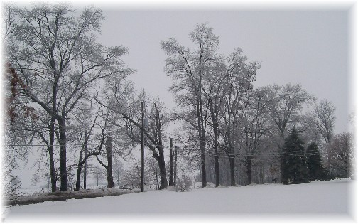 Office view after ice storm 2/2/11