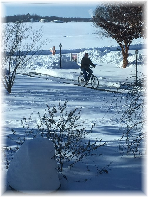 Bicycle ride following storm 1/24/16