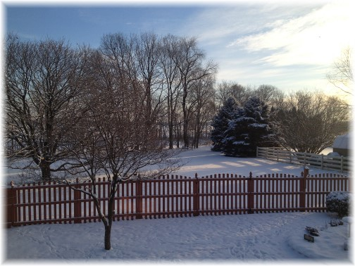 Backyard view 2/17/15