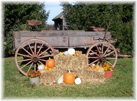 Autumn wagon, Lancaster Country PA