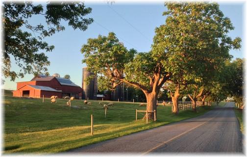 Stone farmhouse on Trout Run Road, Lancaster County, PA