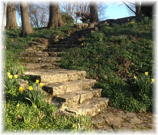 Donegal Springs steps, Lancaster County, PA 4/20/14 (Click to enlarge)
