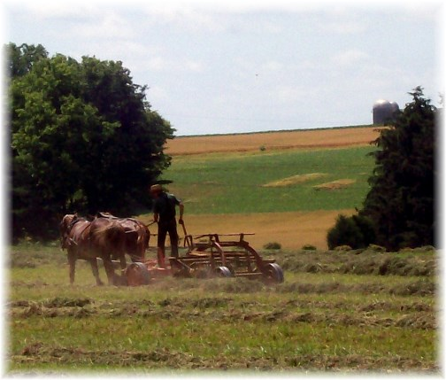 Lancaster County PA Amish hay harvest 6/22/13